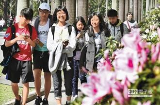 學生瘋打卡!台大杜鵑花節即將展開,社團博覽會同步登場