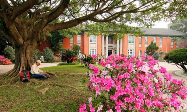 台大校園自1948年園藝系的杜賡甡教授引進杜鵑花後,漸漸成為台大校園最美的風景。(取自台大杜鵑花節網站)