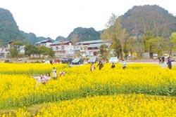 桂鄉精緻旅遊 線路豐富多樣化