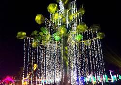 好消息!台灣燈會「阿凡達樹」將在屏東體育館發光