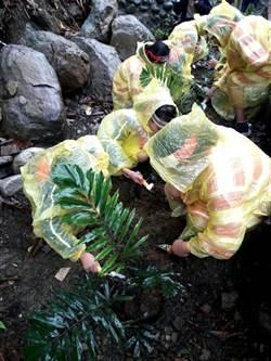 前進偏鄉部落推廣植樹 種回原住民傳統植物