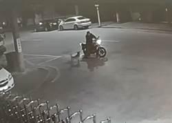 人狗對罵半小時 警方查看係酒駕開罰