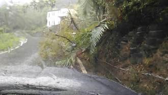 獨》颱風來襲困大雪山 5登山客平安獲救