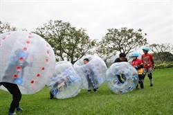 樹林柑園露營場 風靡歐洲「泡泡足球」超夯
