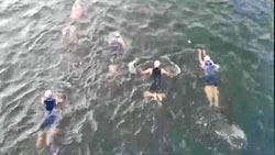 愛河鐵人三項選手溺斃 家屬求影片