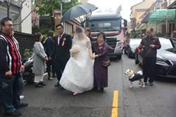 去年花圈加布條求婚 貨車司機今派6輛拖車頭娶美嬌娘