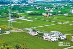 全球最貴!台灣農地8年狂飆3.2倍 這縣市漲最兇