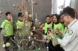 「森林與我的家鄉」資材創作 環境意識校園扎根