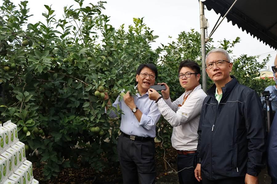 屏東縣長潘孟安(左)與頂新集團三董魏應充(右)在記者會現場與中國大陸的德克士集團進行線上視訊、介紹屏東的檸檬。(謝佳潾攝)