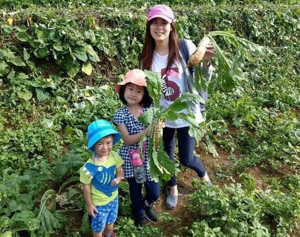 三芝蕃婆林休閒农场体验拔萝卜。(新北市农业局提供)