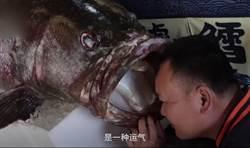 釣到1.6公尺怪獸級石斑魚 有人出高價他堅持不賣