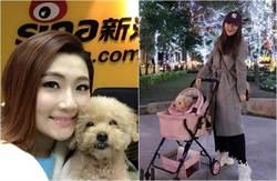 影》15歲愛犬Pinky突病逝 Selina崩潰大受打擊