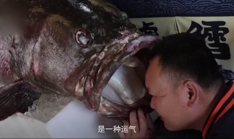 釣到1.6公尺怪獸級石斑魚 有人出高價他堅持不賣(圖翻攝自/廣西新聞網)