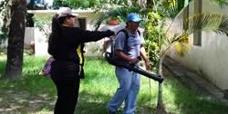 小黑蚊開始肆虐 花蓮環保局積極防除宣導