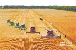 噩夢醒不過來! 美農民洩關鍵…無奈繼續種大豆