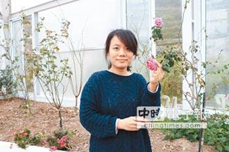 二代茶農拚創新 玫瑰烏龍飄香