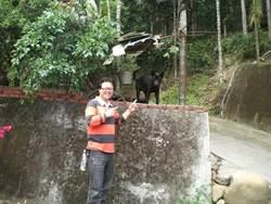 張俊明帶狗也帶心 寵物狗組護衛隊巡邏家園
