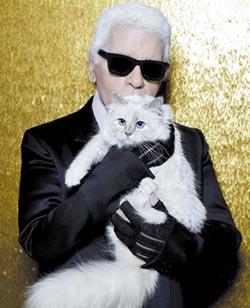 繼承遺產的富豪貓
