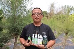南化青農不種芒果 種澳洲茶樹賣精油