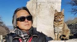 鄰貓阿福翻牆來亂入  竟成雕塑家畫筆下的主角