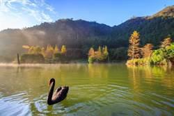 以湖光山色為舞台  優人神鼓奏響聽海之心