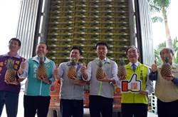 農委會陳吉仲宣布 外銷鳳梨破萬噸