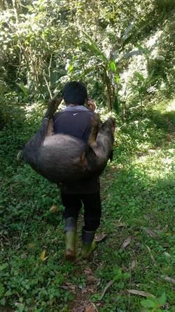 鄒族獵人協會全台首發獵人證 最年輕獵人是26歲女性