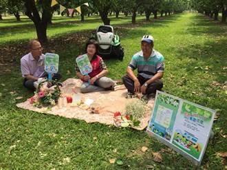 200台露營車開進麻豆  賞柚花品嘗在地美食