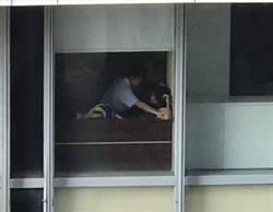 高中生情侶圖書館「壁咚」 下一秒網全暴動