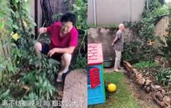 後院被岳母改造成「實用花園」 外國女婿傻眼