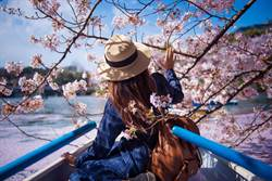 櫻花季IG 美照怎麼拍? 東京神美拍照點公開