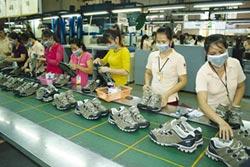 專家傳真-對越南脫貧的省思
