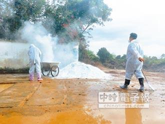 豬瘟襲陸7個月 21省疫區解除封鎖