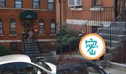 谷歌街景驚見男子「四腳朝天」 全世界都好心疼
