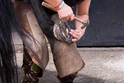 為何古人要給馬蹄釘鐵?原來作用這麼大!