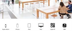 四大新兵加入  Apple到底還有哪些服務?