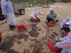 金門馬山灘岸油汙染  已清除油汙物4270公斤