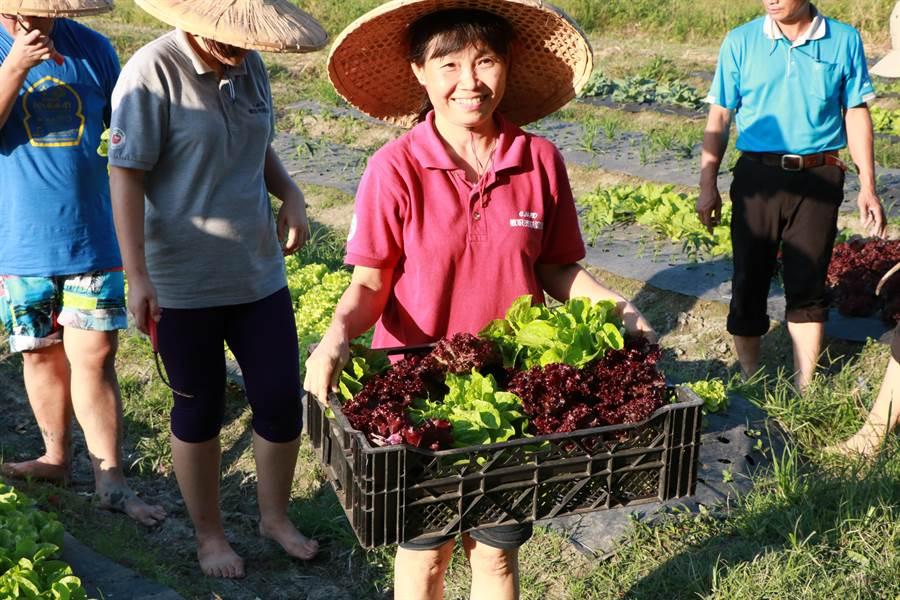 馬來西亞波德申中華中學參訪南榮國中食農教育。(謝佳潾攝)