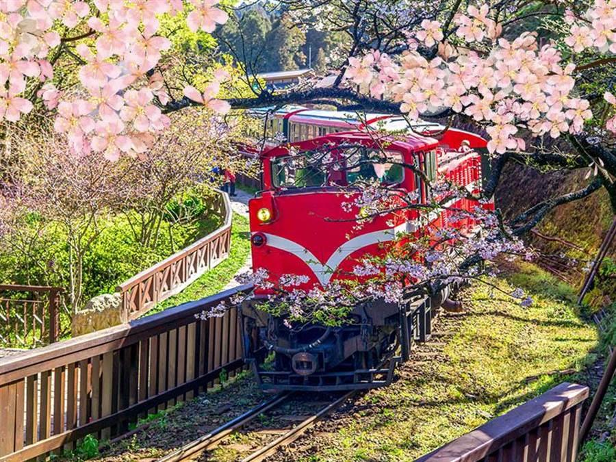 全台拚觀光!春遊加碼南投最闊氣 每人可折2750元 圖說:嘉義市推出春遊加碼活動,遊客在活動期間至該市旅遊,可免費搭乘阿里山小火車。(易遊網提供)