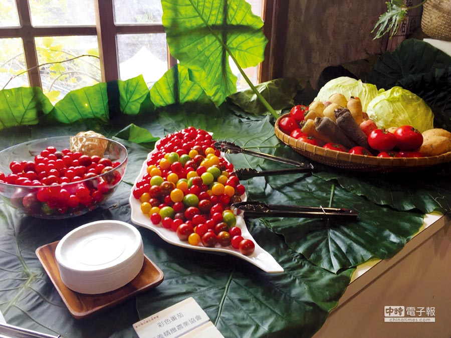 現場提供風味點心,體驗地方美食力。圖╱中衛發展中心提供