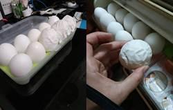 籃中驚見像衛生紙的怪蛋 網曝光破蛋畫面