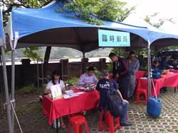竹子湖海芋季本周浪漫登場 邀請民眾寄出祝福