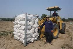 新市青農返鄉種地瓜  年產量破百萬台斤