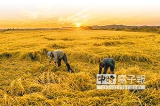 目標全面小康 陸力推三農任務