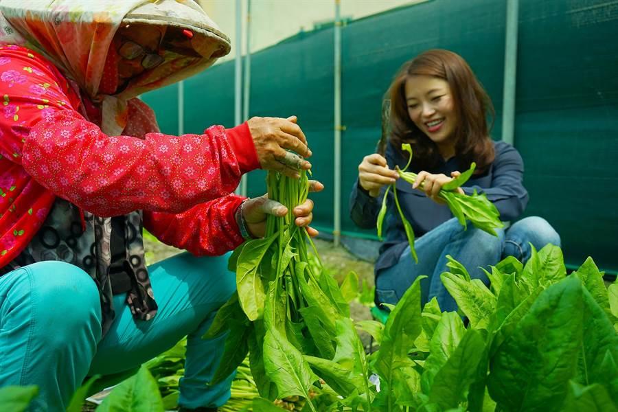 雲林前立委張嘉郡(右)化身策展人,將在台北華山文創園區推出《雲林時刻》地方創生特展,她特地帶領團隊下鄉拍攝雲林的美,和農民話常家。(張嘉郡提供)