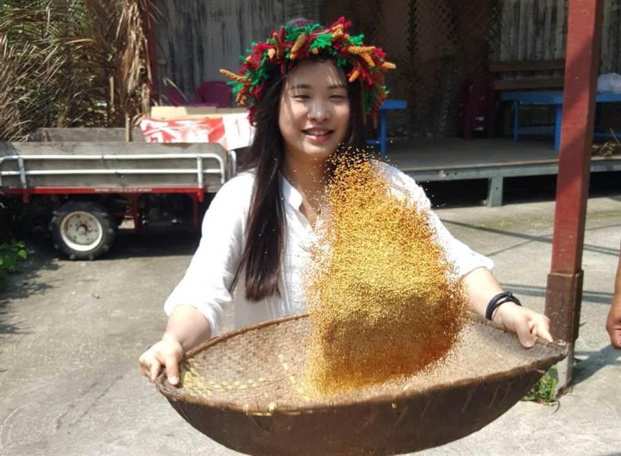金峰鄉推系列農遊觀光遊程,一年四季都可體驗原鄉風情。(莊哲權翻攝)