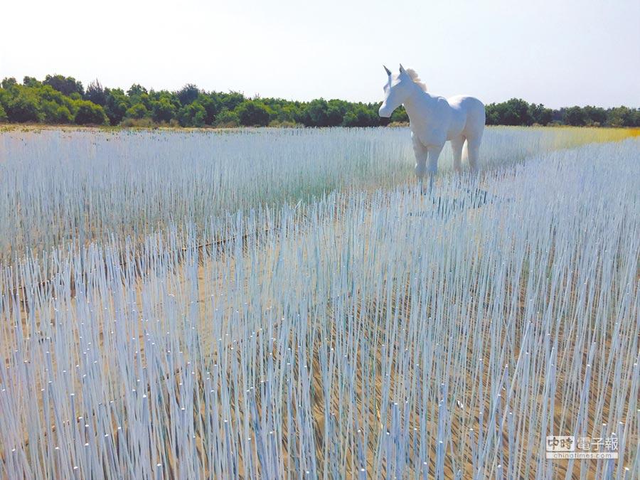 今年漁光島藝術節以「海島新樂園」主題,藝術家游文富在海岸打造一道蜿蜒漸層地景藝術作品「奇幻島」。(曹婷婷攝)