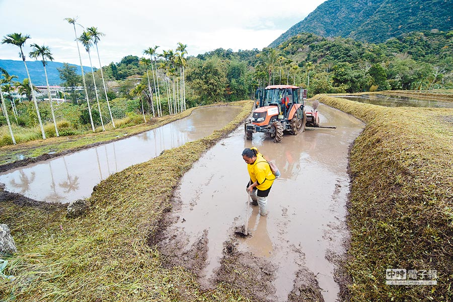 農委會已初步同意台東6000多公頃土地畫出山坡地範圍,對農民影響甚鉅。(莊哲權攝)