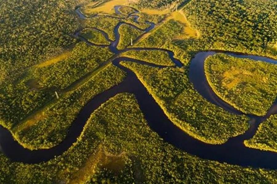 亞馬遜雨林。(達志影像/shutterstock提供)