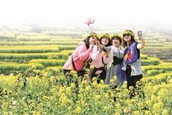 陸青轉向文化旅遊 探索心發現